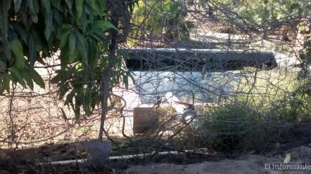 Al final está el reservorio de agua de la Moreno Rutowsi, al fondo una infraestructura de riego para su palmar